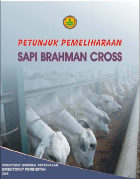 Petunjuk Pemeliharaan Sapi Brahman Cross