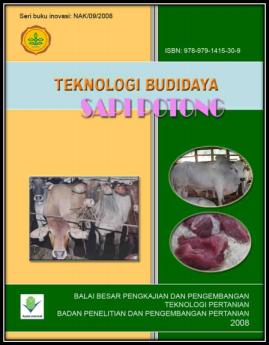 Budidaya Sapi Potong
