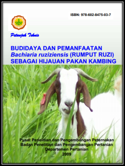 Budidaya dan Pemanfaatan Bachiaria ruziziensis (Rumput Ruzi)